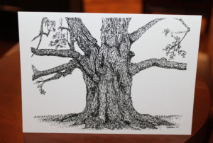 Each sister received a card with this depiction of the Gossip Tree. It was drawn in 2017 by Marianne Stremsterfer, an artist who is a member of St. Joseph Parish in Springfield, Ill., where Sister Mary Ellen Backes serves. The artist accompanied Sister Mary Ellen to Maple Mount in July 2017 and sat down to sketch the tree.
